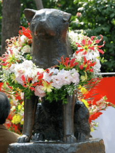 Hachiko loyal dog of Japan celebrated