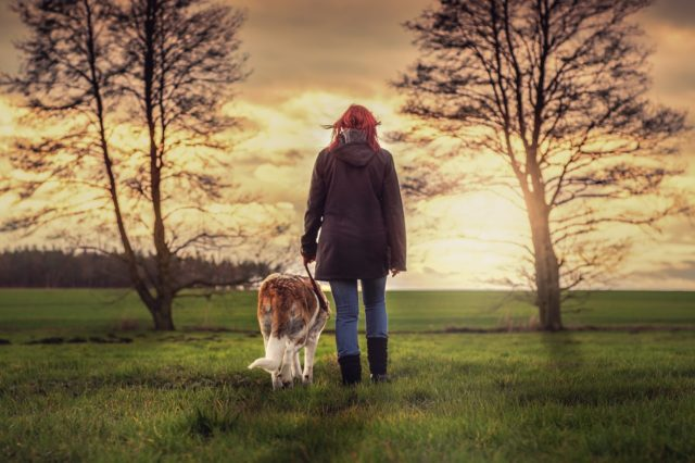 Dog & Human